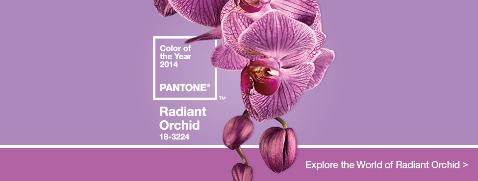 Pantone Color of the Year 2014: Radiant Orchid - Rutherford's Design